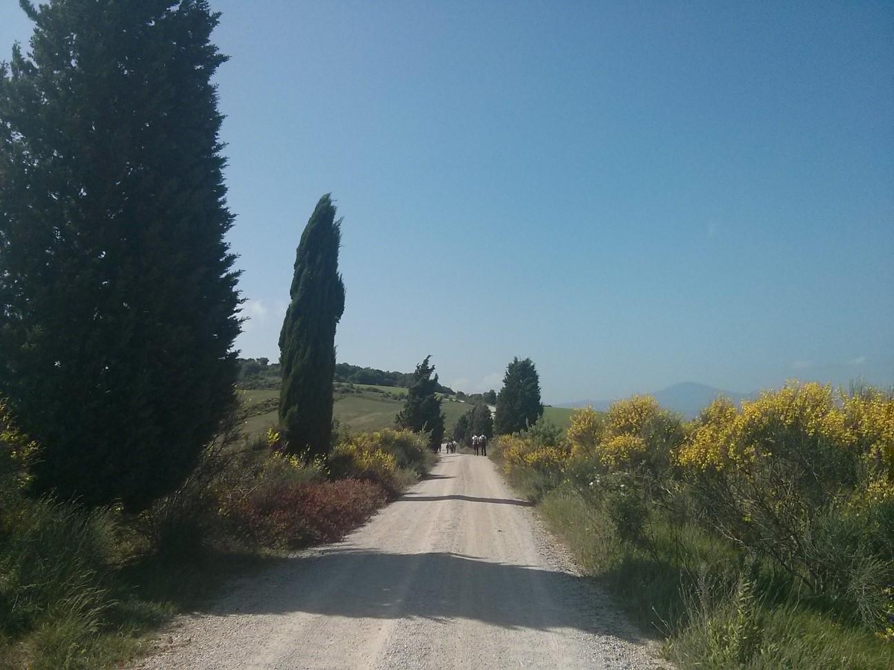 Via del Nobile da Pienza a Montepulciano