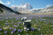 29-30 luglio 2017  Alpinismo: Gran Sasso