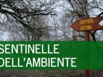 Sentinelle dell'ambiente