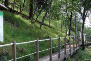 """27-28 maggio 2017  Orto Botanico """"Pietro Pellegrini"""" Pian della Fioba (MS) Monte Pelato"""