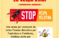 25 settembre 2017 Serata in sezione: La vespa velutina