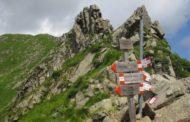 2-3 giugno 2018  ALPE DI SUCCISO - Alta via dei Parchi