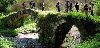 """DOMENICA 17  MARZO 2019: Parco Regionale """"MARTURANUM"""",  da BLERA a BARBARANO Romano."""