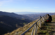 3 OTTOBRE 2021: PARCO DELLE FORESTE CASENTINESI